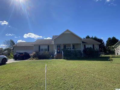 113 Childmark Drive, Albertville, AL 35950 - MLS#: 1793405