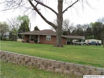 206 Green Cove Road, Huntsville, AL 35803 - #: 467045