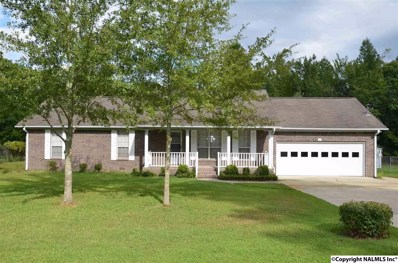217 6th Street, Rainbow City, AL 35906