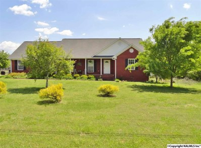 15586 Mcculley Mill Road, Athens, AL 35613