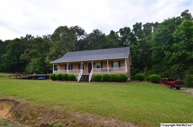 3617 Hawk Road, Southside, AL 35907