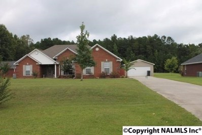 68 Nelson Hollow Road, Somerville, AL 35670
