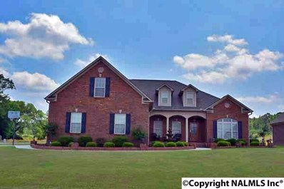 185 Mountain Cove Drive, Trinity, AL 35673