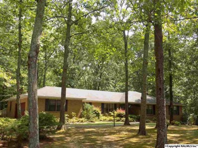 2901 Burningtree Mountain Road, Decatur, AL 35603
