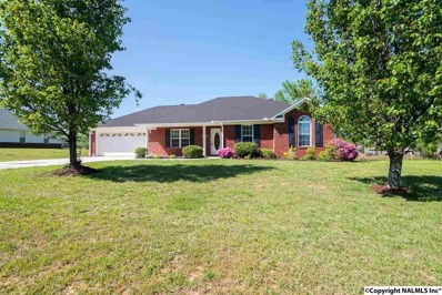 2439 Ready Section Road, Toney, AL 35773