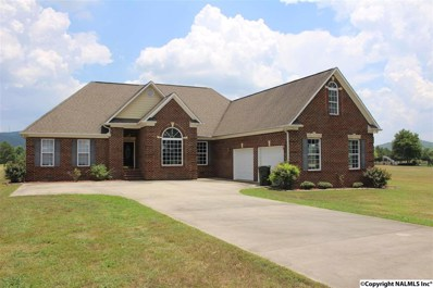 374 County Road 17, Scottsboro, AL 35768