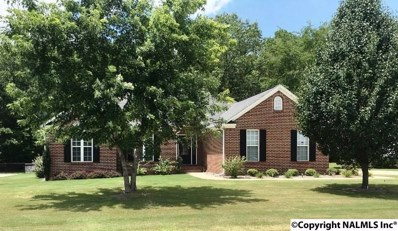 118 St Martin, Rainbow City, AL 35906