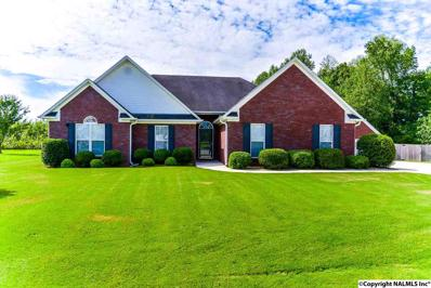 132 Wind Stone Drive, Toney, AL 35773
