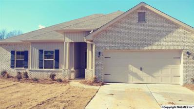 14351 Water Stream Drive, Harvest, AL 35749