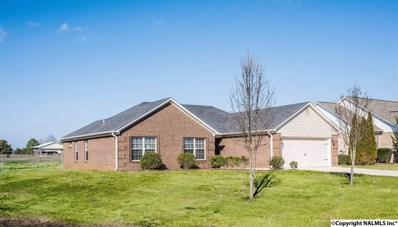 123 E Wind Stone Drive, Toney, AL 35773