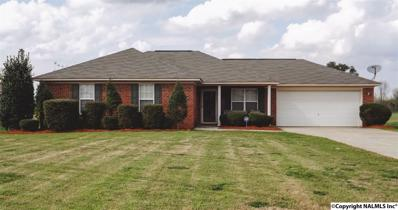 351 Shady Lane, Hazel Green, AL 35750