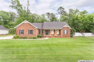 113 Cove Creek Road, Rainbow City, AL 35906