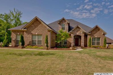 110 Burwell Ridge Trail, Harvest, AL 35749