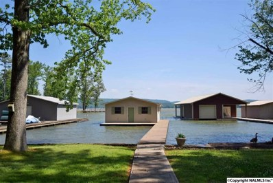 1214 Skyline Shores Drive, Scottsboro, AL 35769