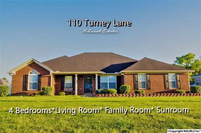 110 Turney Lane, Toney, AL 35773
