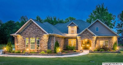 119 Huntsmen Lane, Harvest, AL 35749