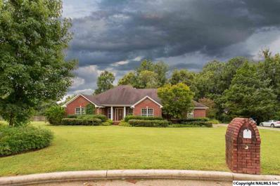 14351 Doe Run Road, Harvest, AL 35749