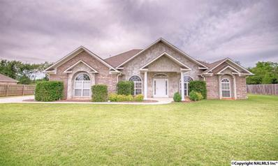 12817 Wakea Drive, Madison, AL 35756