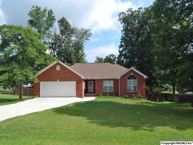 127 Stoney Mountain Drive, Guntersville, AL 35976