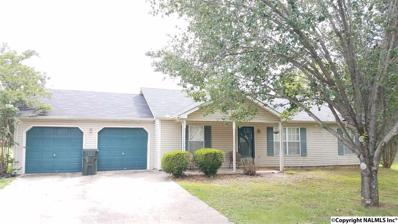 336 Buffalo Creek Drive, Toney, AL 35773