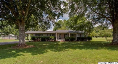 2025 Joe Quick Road, New Market, AL 35761