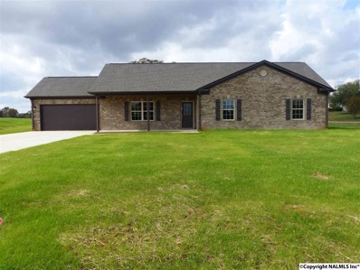 1078 Murphy Hill Road, Toney, AL 35773