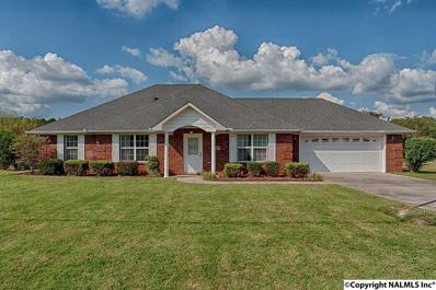 27609 Michael Lane, Toney, AL 35773