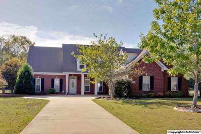 162 Toney Acres Drive, Toney, AL 35773