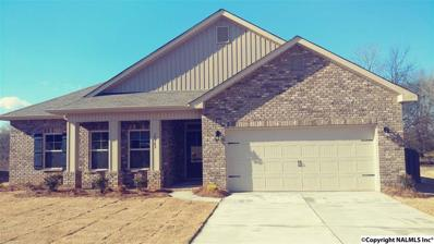14363 Water Stream Drive, Harvest, AL 35749