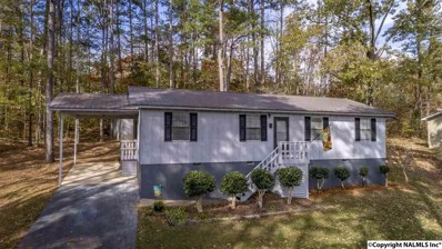 3914 Plains Avenue, Fort Payne, AL 35967