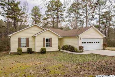 56 Hudgins Road, Eva, AL 35621