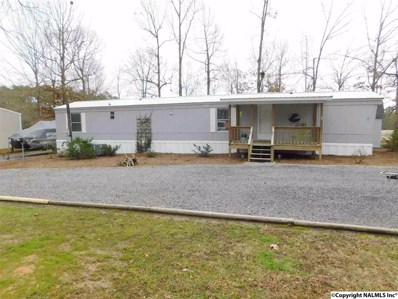 40 County Road 700, Cedar Bluff, AL 35959