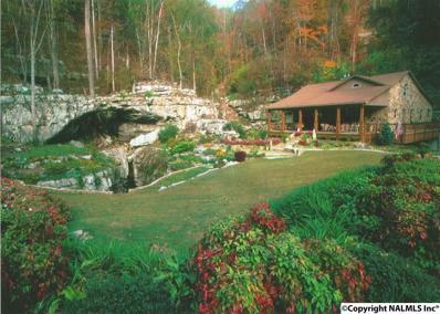 100 Natural Bridge Road, Grant, AL 35747 - #: 1091097