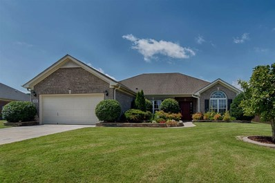 318 Smokey Hills Court, New Market, AL 35761