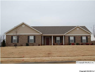 118 Cool Creek Road, Hazel Green, AL 35750