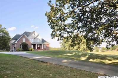 484 Beard Road, Guntersville, AL 35976 - MLS#: 1103698