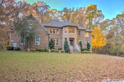 134 Chinook Trail, Madison, AL 35758 - #: 1107732