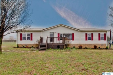 487 Golightly Spring Road, Toney, AL 35773