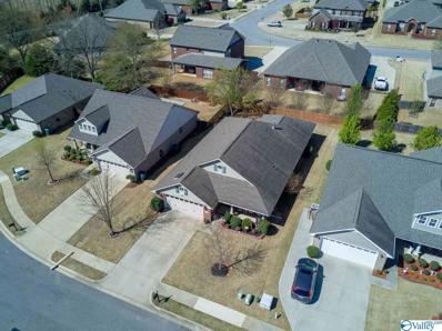 234 Crab Orchard Drive, Madison, AL 35757