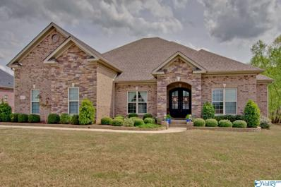 8217 Goose Ridge Drive, Owens Cross Roads, AL 35763