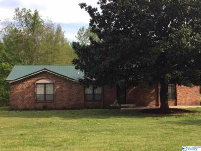 149 Pine Street, Decatur, AL 35603 - #: 1116683