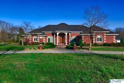 1450 Elkwood Section Road, Hazel Green, AL 35750 - MLS#: 1117257