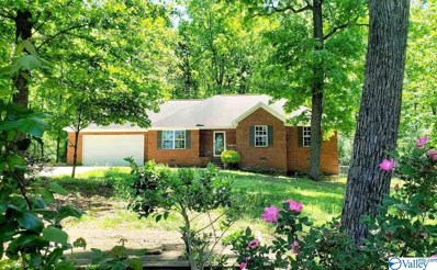222 Stoney Mountain Drive, Guntersville, AL 35976
