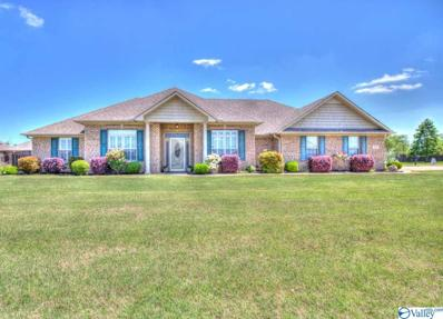 13907 Summerfield Drive, Athens, AL 35613