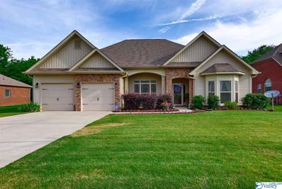 14389 Water Stream Drive Nw, Harvest, AL 35749