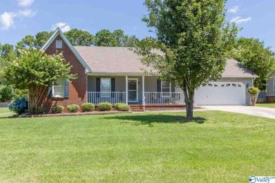 113 Blueberry Drive, Madison, AL 35757
