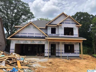 5009 Clearwater Creek Road, Brownsboro, AL 35741