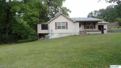 482 Iva Lee Cutoff Road, Attalla, AL 35954