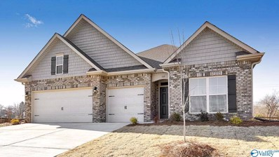102 Dace Court, Harvest, AL 35749