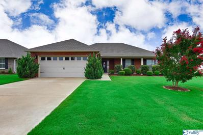 118 Virginia Fern Circle, Madison, AL 35757